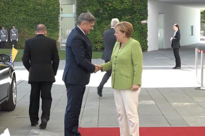 Zvizdic Merkel